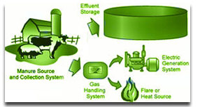 Dairy Biogas Systems
